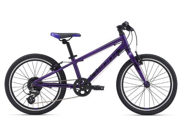 Giant ARX 20 2021 Kids Bike