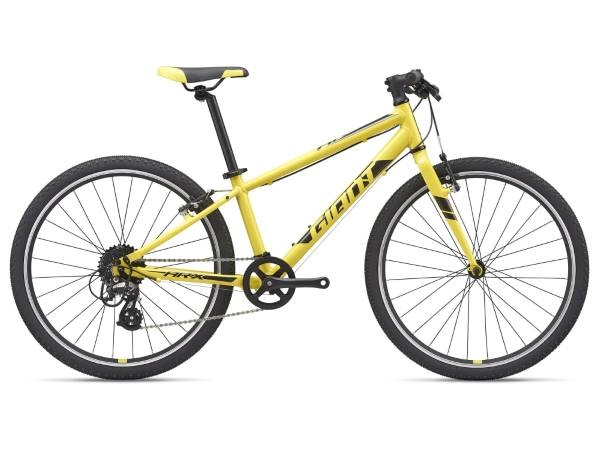 Giant ARX 24 2021 Kids Bike
