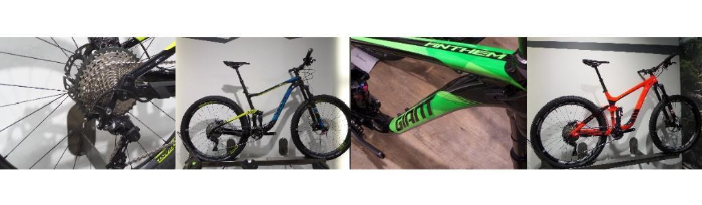 Giant Mountain Bikes at Dales Cycles Glasgow